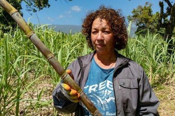 Congé maternité agricultrice Domaine Coco Sylviane Bebeau 210918