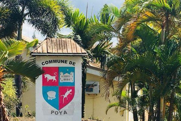 Logo de Poya