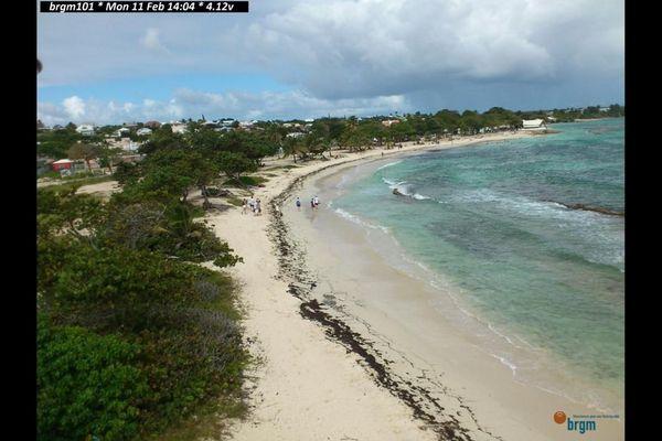 plages sous surveillance