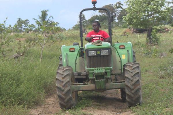 Joyce agricultrice