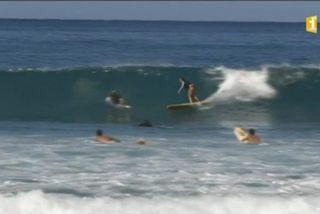Surf Réunion