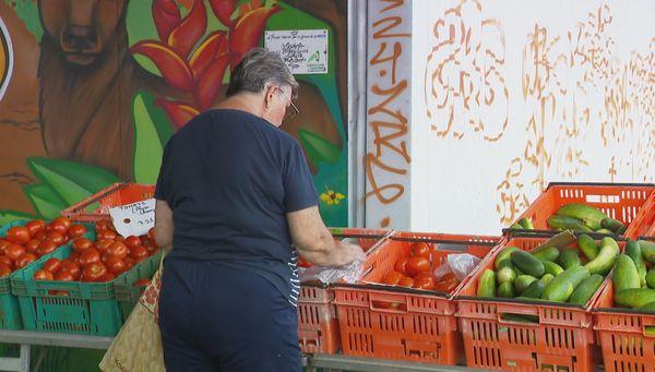 Cliente et tomates au marché de Ducos, janvier 2021