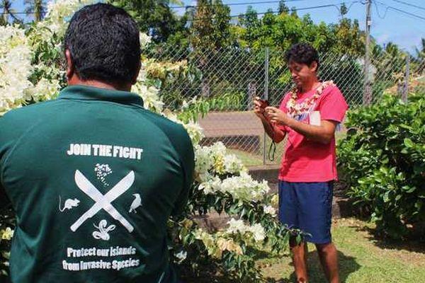Ravahere Taputuarai photographie les plantes pour mieux les recenser