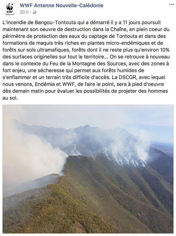 Incendie Tontouta Facebook WWF