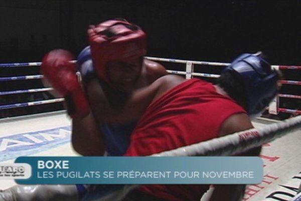 Boxe : les pugilats se préparent pour les championnats de novembre