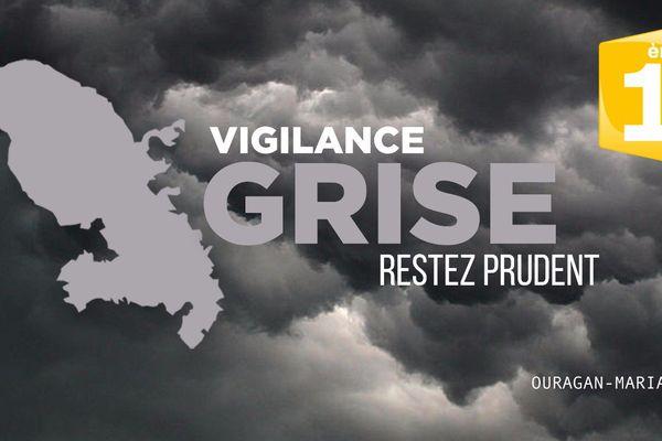 vigilance grise