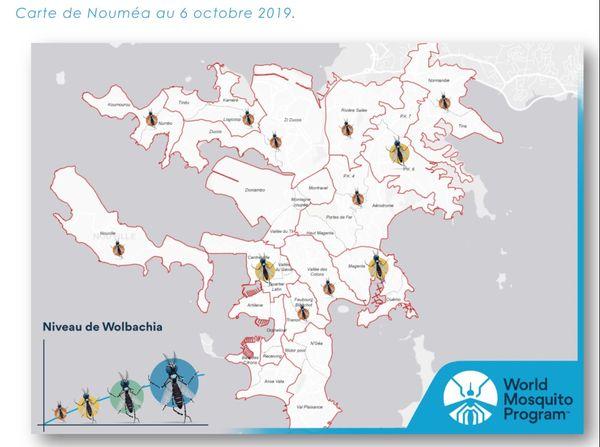 La carte de niveau des moustiques Wolbachia à Nouméa au 6 octobre 2019