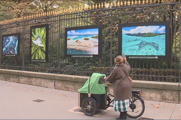 expo outre-mer jardin du Luxembourg