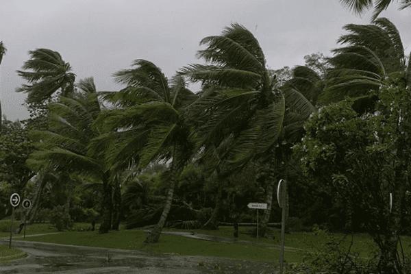 Vents et Pluies à Punta Cana