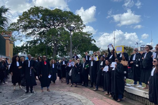 Mouvement des avocats