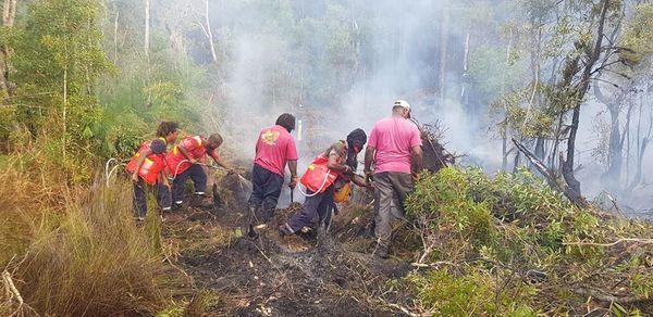 Incendie Ile des Pins novembre 2019
