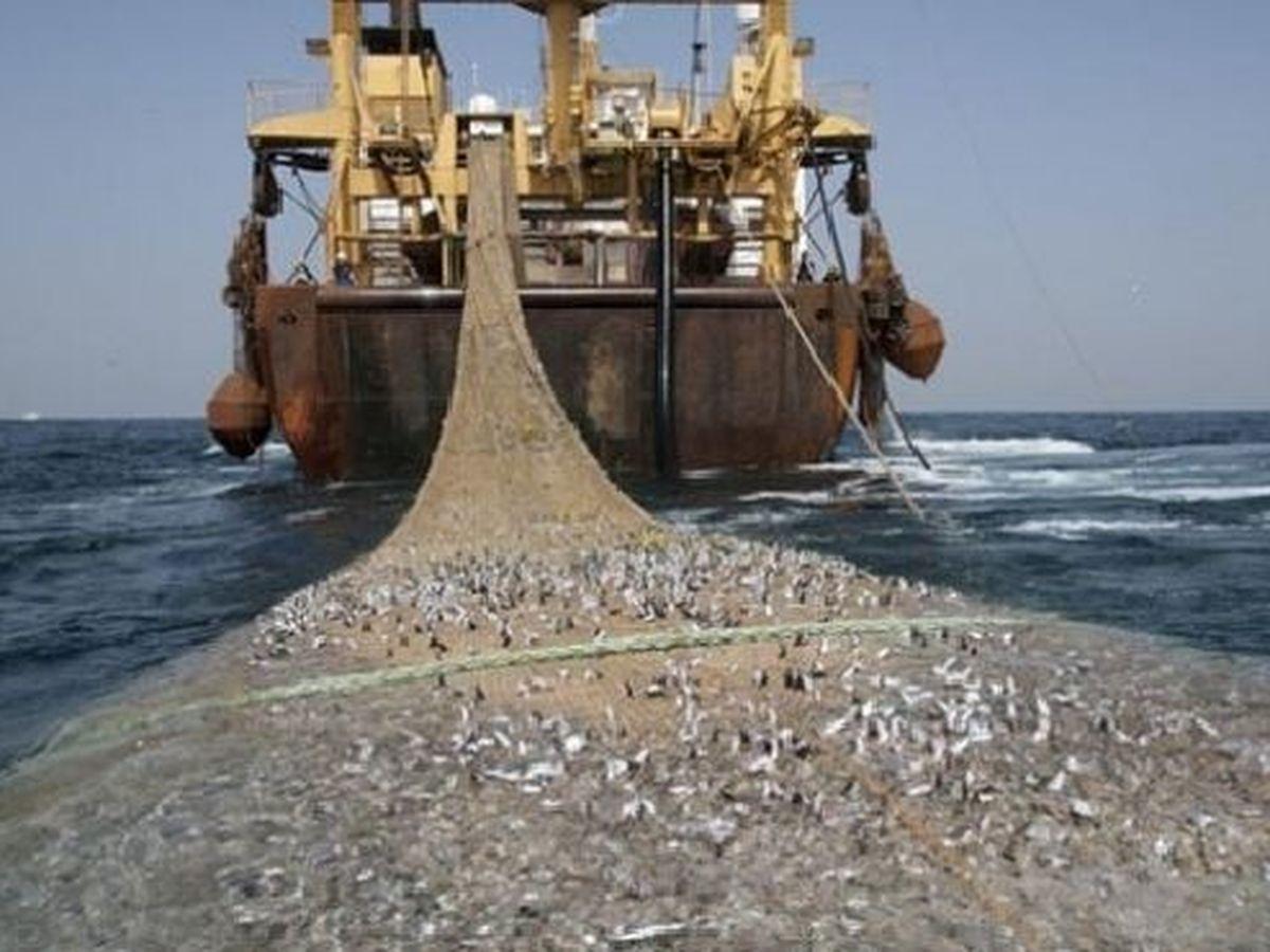 l'actu dans la région : les ressources halieutiques de Mada sont pillées