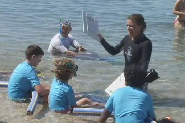 Aire marine éducative La Saline