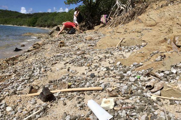 nettoyage îlot Sainte-Marie
