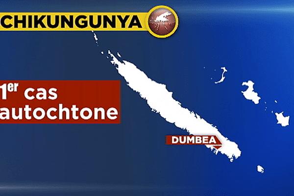 Premier cas autochtone de chikungunya en Nouvelle-Calédonie