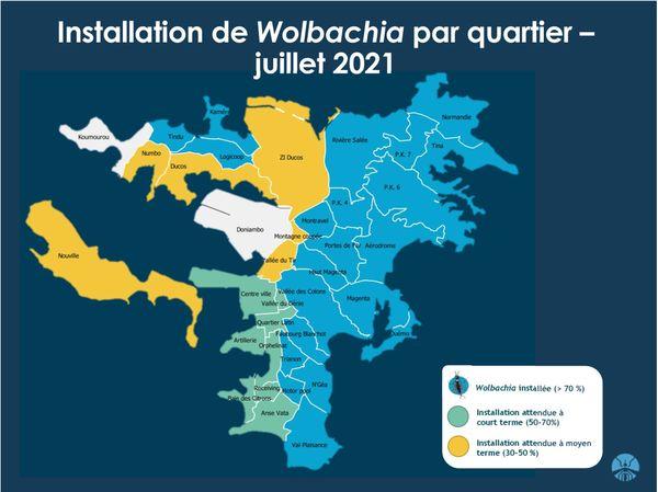 Programme Wolbachia, installation par quartier, juillet 2021