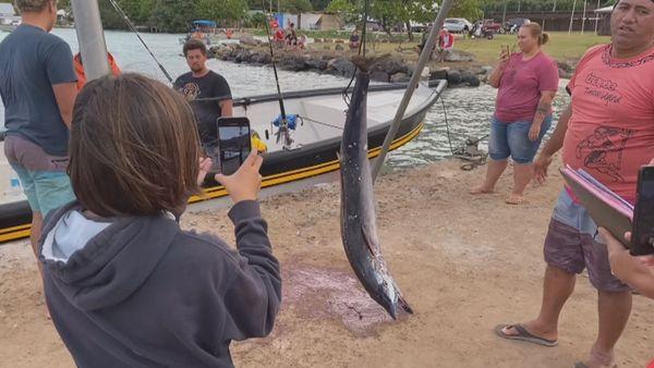 Concours de pêche à Rikitea : le jackpot pour Tehau Lenoir avec un espadon voilier de 45 kg