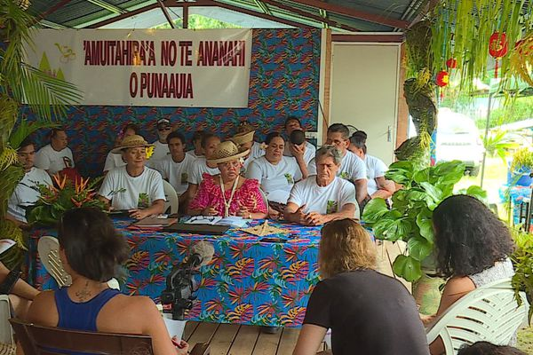 Punaauia / elections municipales
