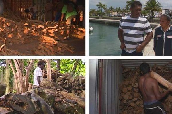 Affaire du bois de santal Lifou-Vanuatu, mars 2019