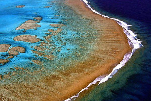 Nouvelle-Calédonie corail