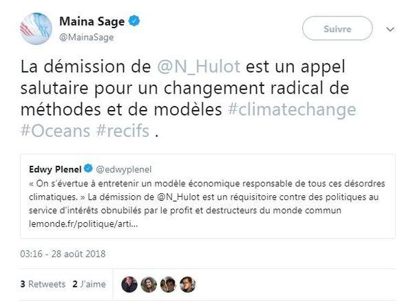 Réaction de Maina Sage à la démission de Nicolas Hulot