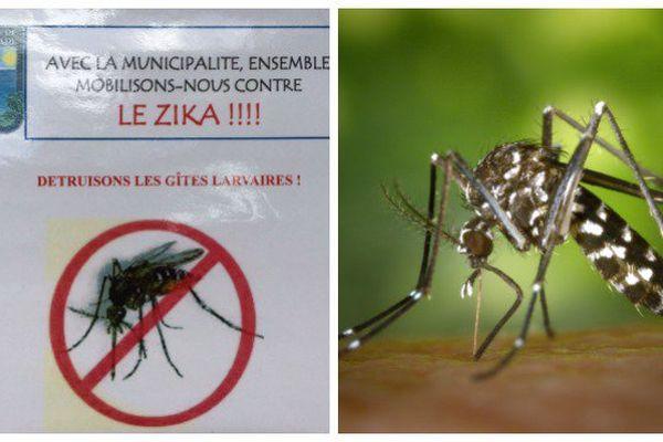 Zika malades