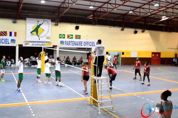 demi finale volley