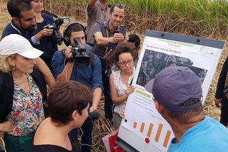Annick Girardin a rencontré les agriculteurs dans les hauts de Sainte-Marie.