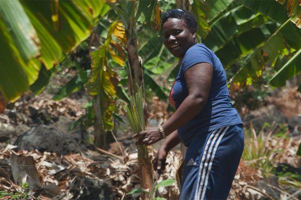 Nous, gens de la terre : Mayotte, les combattantes