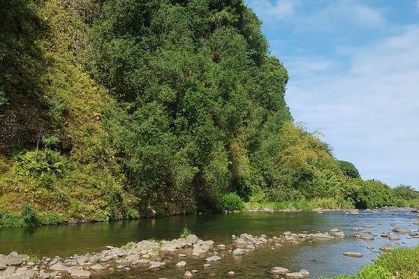 Rivière Réunion