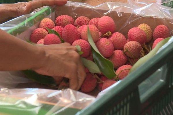 export de fruits letchis soumis à déclaration 031219