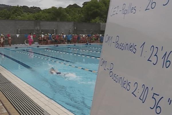 7e dolphin challenge / natation