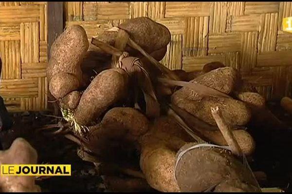 Foire agricole à Papeari