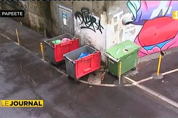 Papeete : très chères ordures
