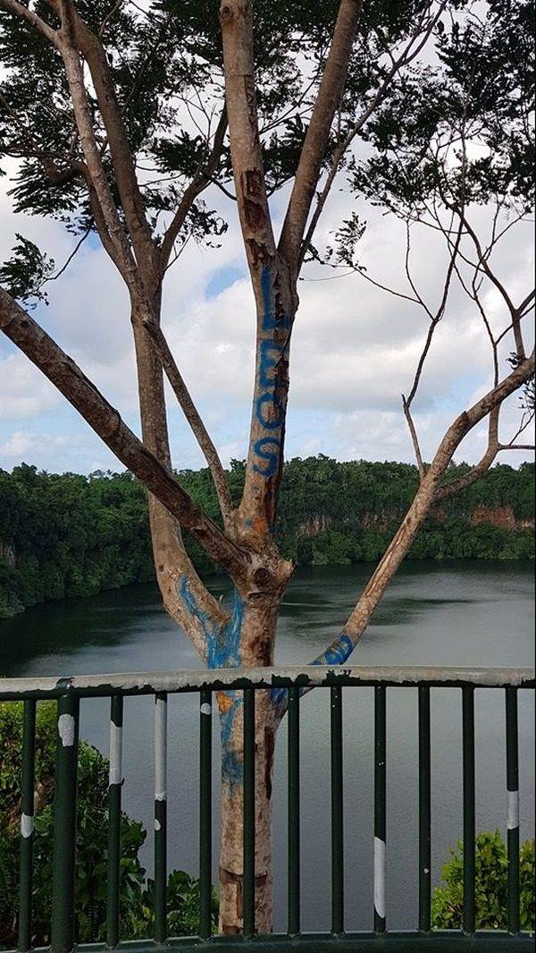 site belvédère du lac Lalolao