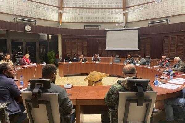 Conférence sur le droit foncier ancestral, sénat coutumier, 20 juillet 2021