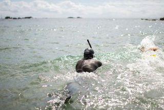 Benoît Lecomte a plongé mardi matin dans les eaux du Pacifique
