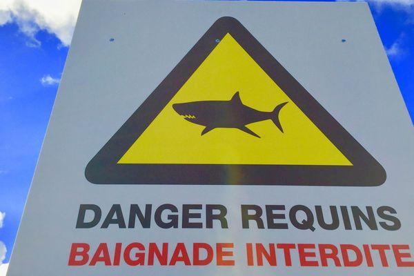 Panneau requin baignade interdite