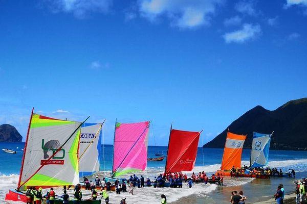 Les gommiers en compétition de la 22ème édition de la Côte Caraibe