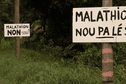 Arrêt immédiat de la pulvérisation du malathion en Guyane!