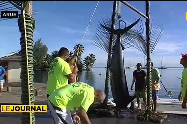 Concours de pêche : le jackpot pour un espadon de 181 kgs