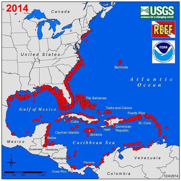 Carte des signalements de poissons-lions