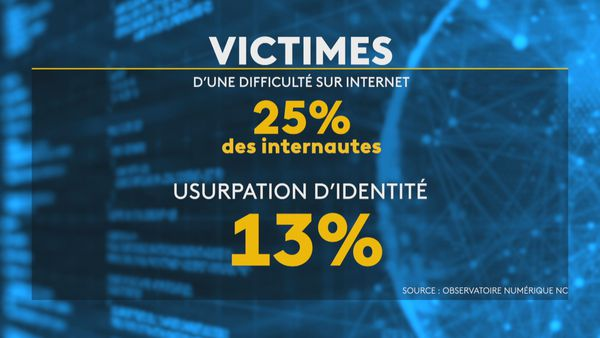 Piratage numérique