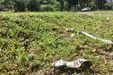 Accident de Saint-Louis : une quatrième victime est décédée
