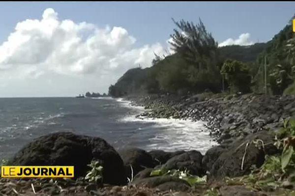 Environnement : nettoyage du littoral sur la côte Est