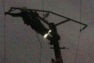 EDF Cable
