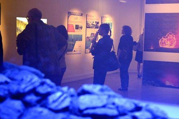 Expo Biolave 2