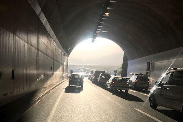 Tunnel des Tamarins
