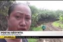 Les habitants de Rurutu dénoncent la dangerosité de la route traversière