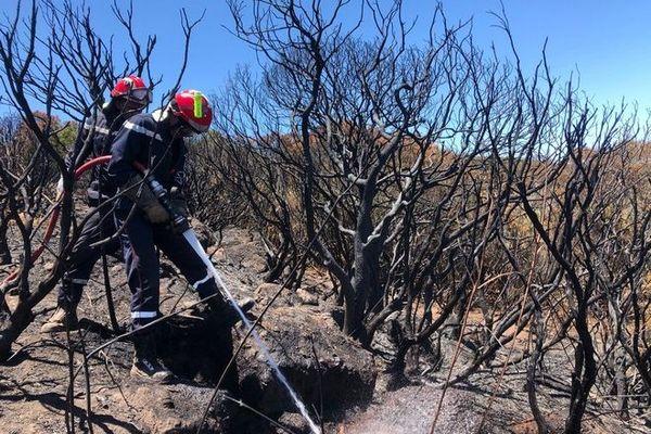 Incendie au Maïdo : les pompiers mobilisés pour éviter de nouveaux départs de feu